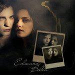 The Twilight Saga Breaking Down