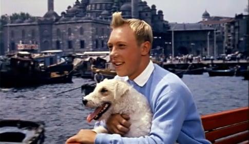 Milu y Tintin